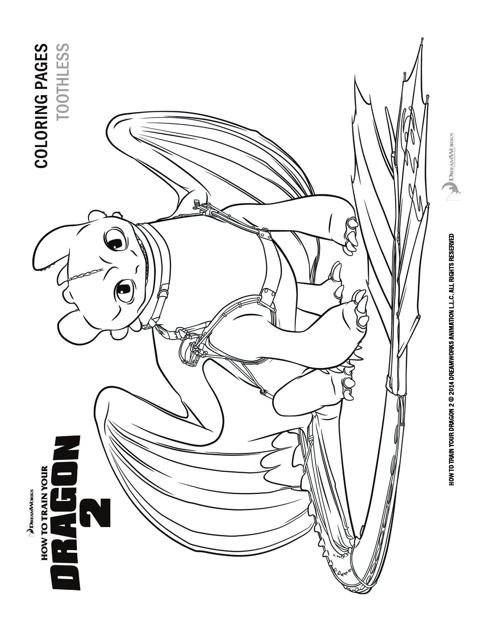 Disegni Da Colorare Dragon Trainer Sogni D Oro
